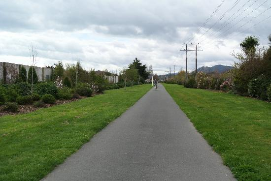 The Gentle Cycling Company: along the cyclingway