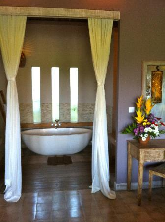 Mathis Retreat: nice bathtub