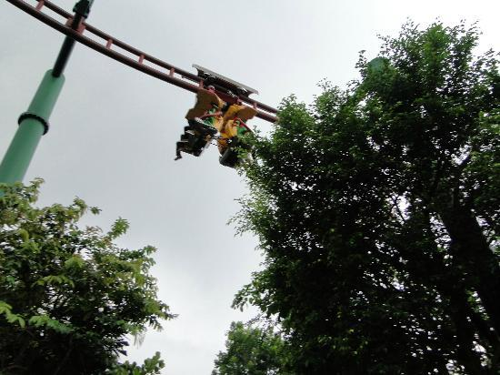 Universal Studios Singapore Canopy Flyer - Lost World & Canopy Flyer - Lost World - Picture of Universal Studios Singapore ...