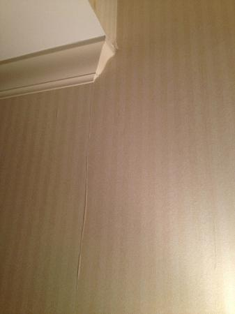 Cincinnatian Hotel: peeling wall paper