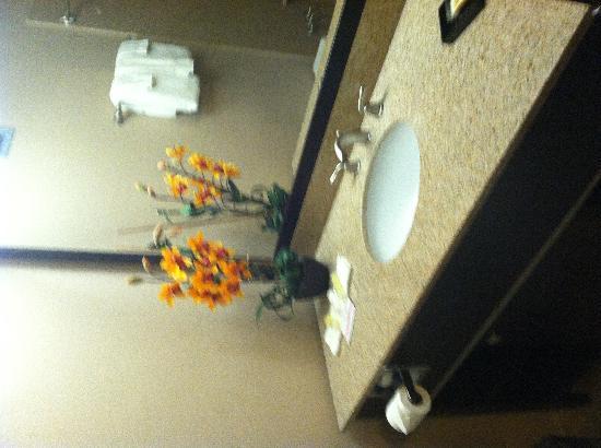 Wyndham Garden Lafayette: Bathroom