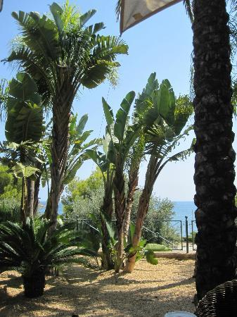 Hotel SH Villa Gadea: This is the view from the restaurant towards the sea