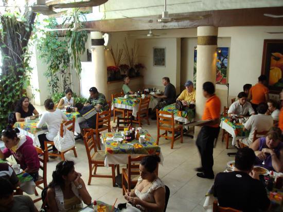 Fredys Tucan : Our patio area