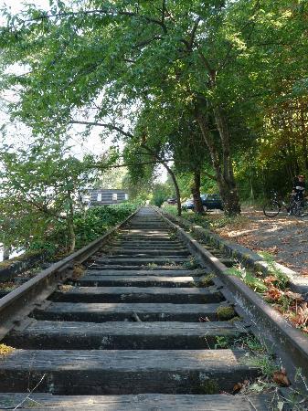 Seattle Cycling Tours: Disused railway line near Fremont Bridge.