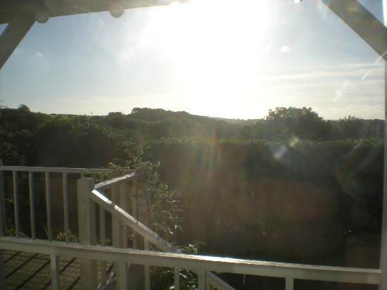 Gower View Luxury Bed & Breakfast : View from breakfast room