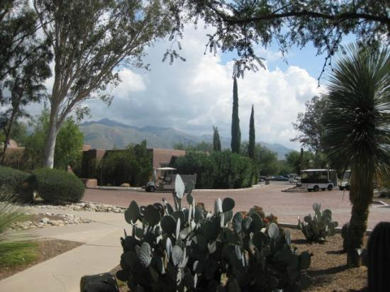 Canyon Ranch in Tucson: View of mountains from Ranch 