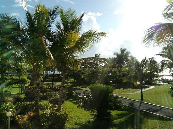 Coconut Bay Beach Resort & Spa: view of grounds from 2nd floor