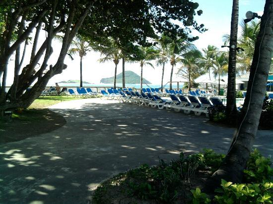 Coconut Bay Beach Resort & Spa: Grounds around pool