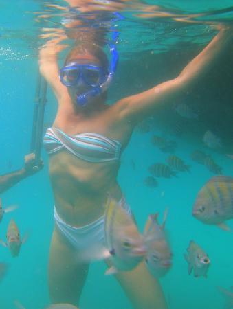 Lagoa Azul: snorkel
