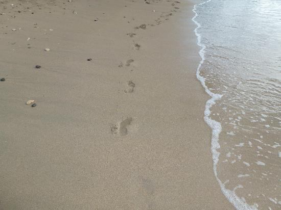 East Winds: leave nothing but foot prints in the sand