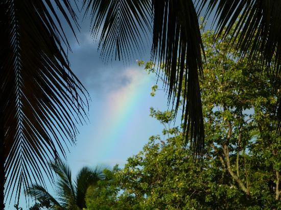 East Winds: EVEN RAINBOWS !