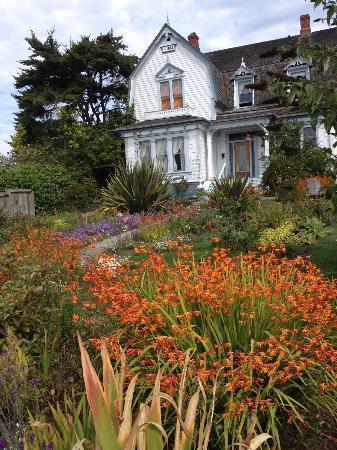 Didjeridoo Dreamtime Inn: Front yard garden