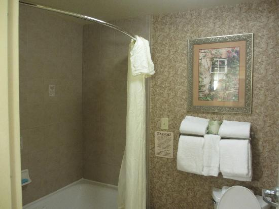 Homewood Suites by Hilton Asheville- Tunnel Road: Bathroom