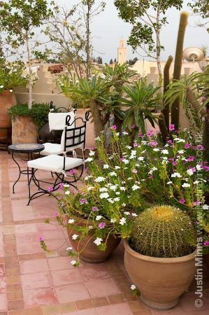 Riad Kniza : The roof terrace