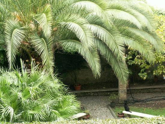 Locanda Sant'Agostino: B&B garden