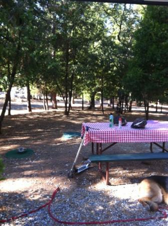 Gold Country Campground and Resort 사진