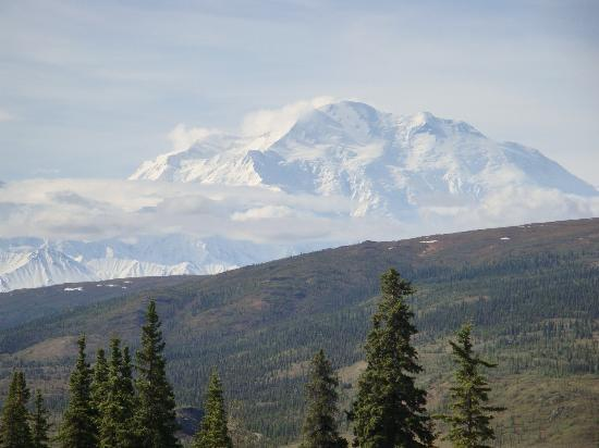 Camp Denali: Mt. McKinley from cabin deck