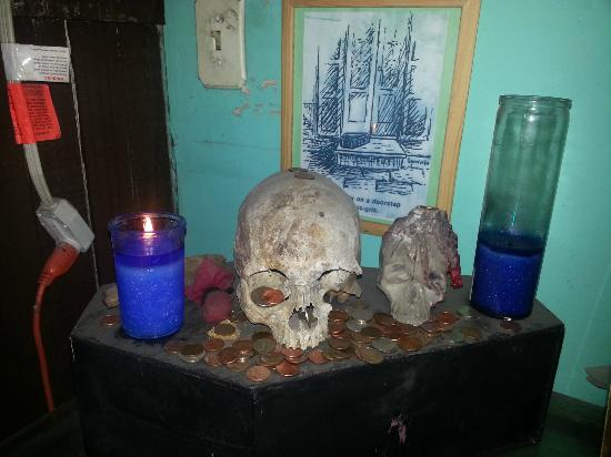 New Orleans Historic Voodoo Museum: Skull