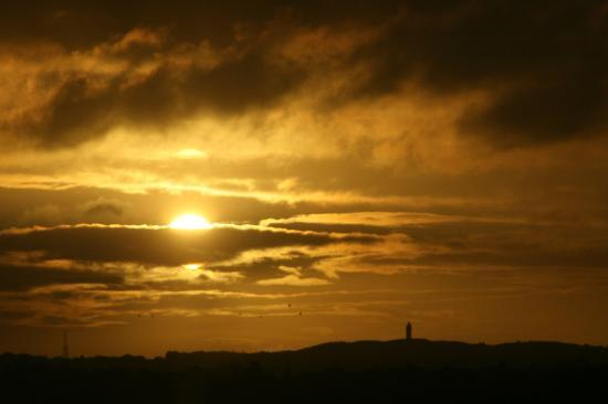 Hilton Belfast: Scrabo Tower in the distance at sunrise