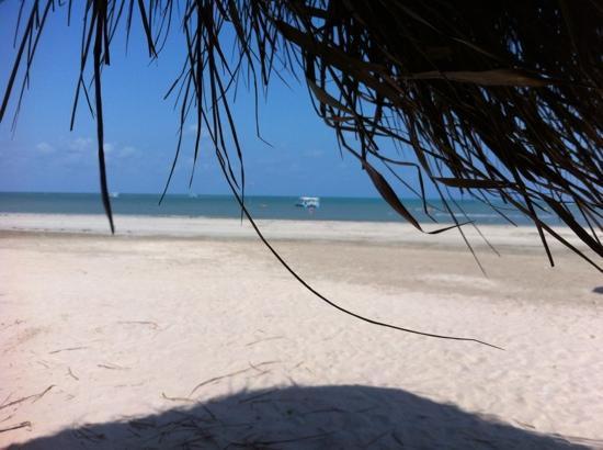 Praia de Paripueira: linda!