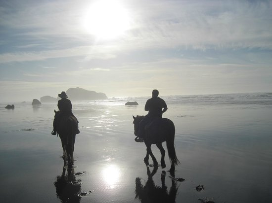Bandon Beach Riding Stables