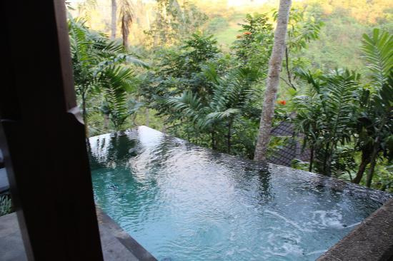 Bidadari Private Villas & Retreat: pool