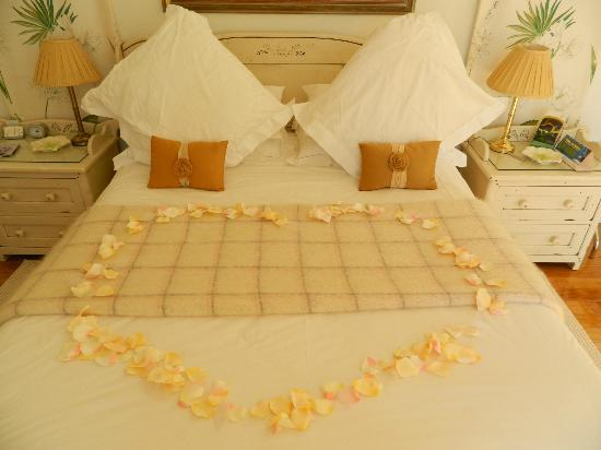80 on Brighton Bed and Breakfast: Rose petals - beautiful touch!