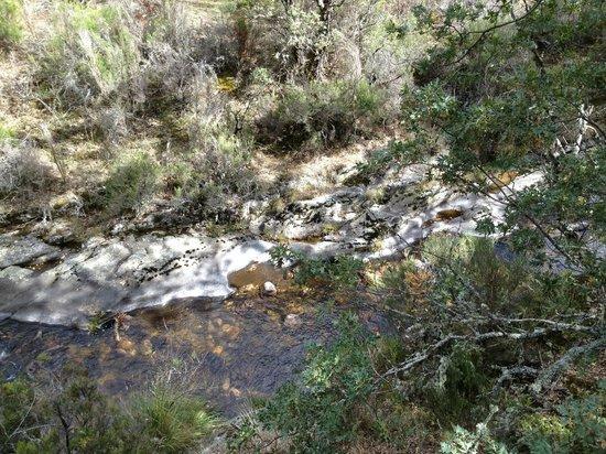 Montejo de la Sierra, إسبانيا: Riviere du Chaparal y de l'Hayedo 
