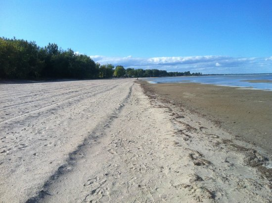Bay City, MI: beach
