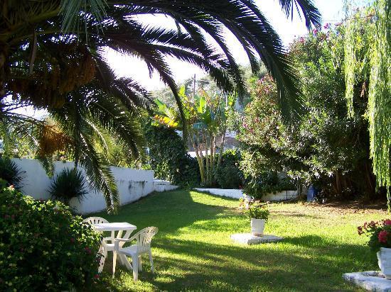 Villa Karina: ein Platz unter Palmen