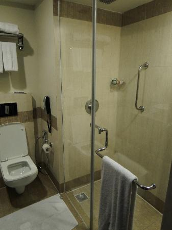Park Plaza Ludhiana: Smallish but very functional bathroom