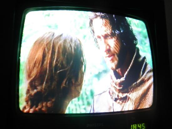 Premiere Classe Roissy - Villepinte - Parc Des Expositions: Found Gerard Butler on french tv!! (sorry geek moment)