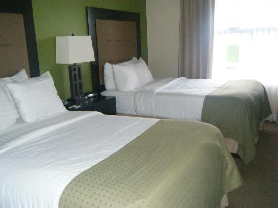 Holiday Inn & Suites Across from Universal Orlando照片