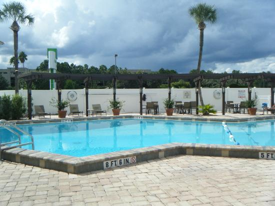 Holiday Inn & Suites Across from Universal Orlando: Swimming Pool