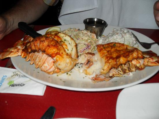 The Brigantine: Lobster - highly recommended