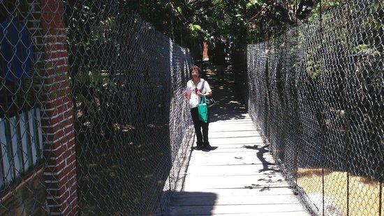 Isla Cuale: Cruzando a la Isla