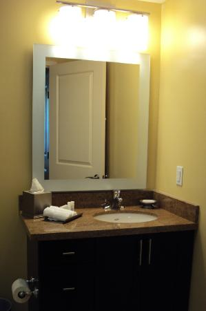 TownePlace Suites Mississauga-Airport Corporate Centre: Vanity
