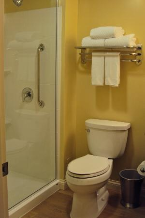 TownePlace Suites Mississauga-Airport Corporate Centre: Bathroom/Shower