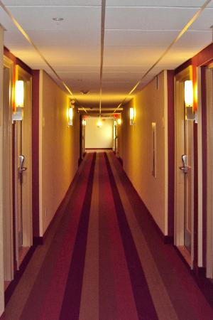 TownePlace Suites Mississauga-Airport Corporate Centre: Hallway