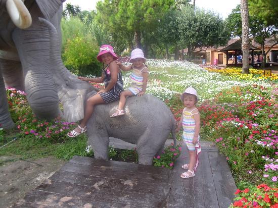Hotel Marina Resort Benidorm: zoo - Mundermar