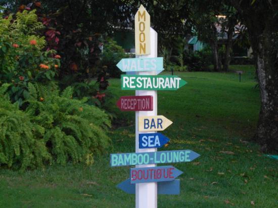 إيست ويندز إن: Choose where you want to go 