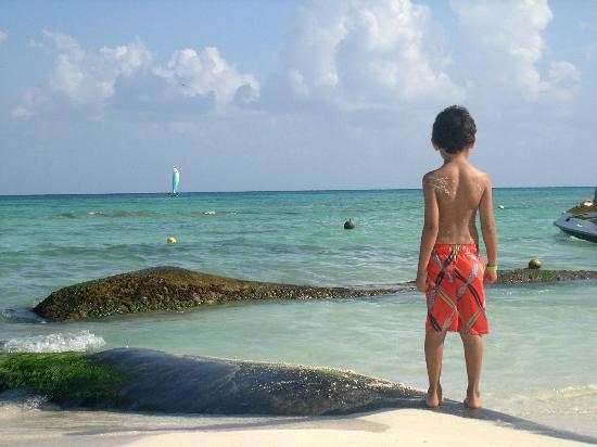 Sandos Caracol Eco Resort: Contemplando el mar
