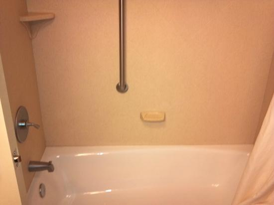 Hampton Inn & Suites St. Louis/South I-55: bath