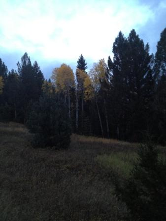Rainbow Ranch Lodge: Late September perfect for fall colors and bugling elk..