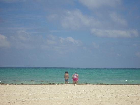 Amarte Hotel: hermosa vista d playa maroma