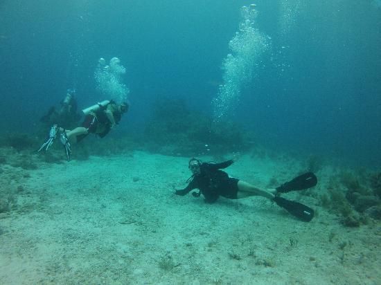 Molasses Reef: Good times!