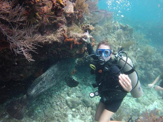 Molasses Reef: My wife & a giant grouper.