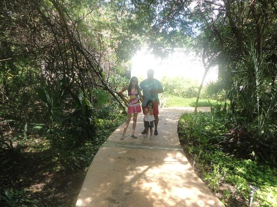 Amarte Hotel: Paseo en jardines del hotel
