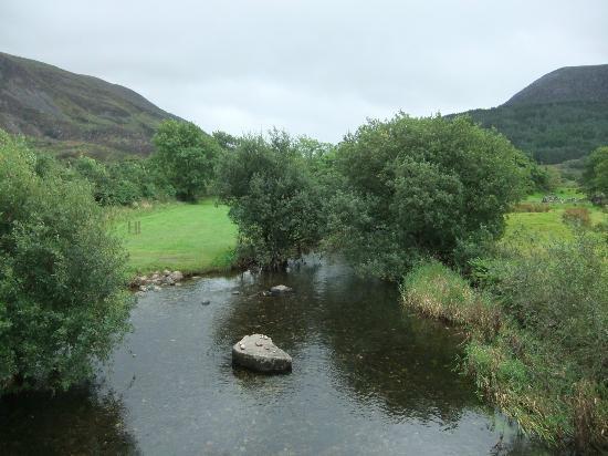 Bryn Gloch Caravan & Campsite: Pure Nature