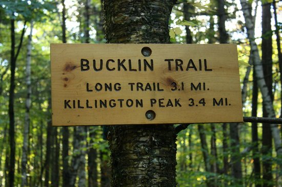 Bucklin Trail: Trail head